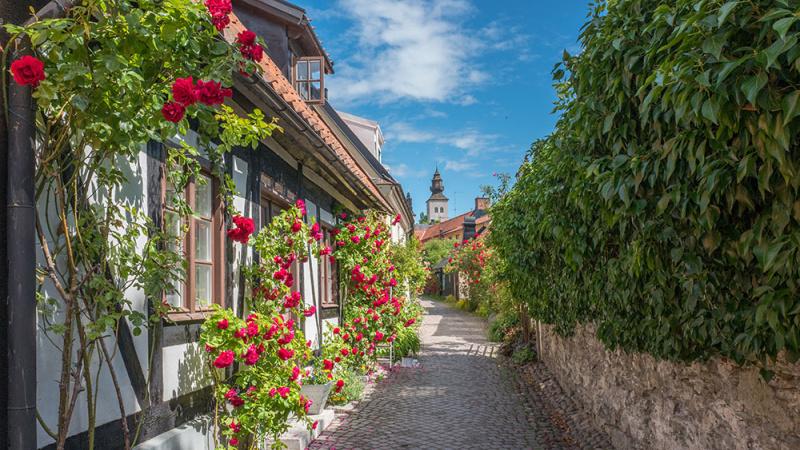 Gotland, 4 dagar