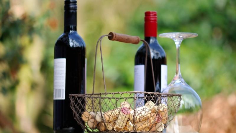 Vinprovning i Burg med grillkväll, 3 dagar