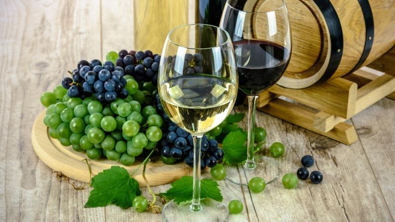 Vinprovning i Burg